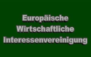 Steuervorteile und Expansion mit Hilfe der EWIV, der Europäischen Wirtschaftlichen Interessenvereinigung
